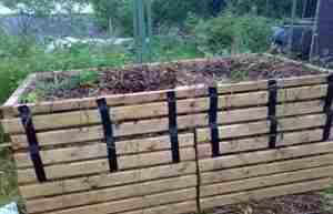 Нельзя закладывать в компост растения с признаками заболеваний и повреждений вредителями.