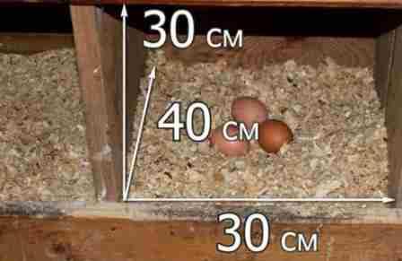 Для умельцев существует интересный вариант – каркасное гнездо по индивидуальным размерам. Чтоб его изготовить, надо сколотить 2 рамки для крепления к ним деревянных брусков размером около 40 см. Рамки надо скрепить между собой брусками т