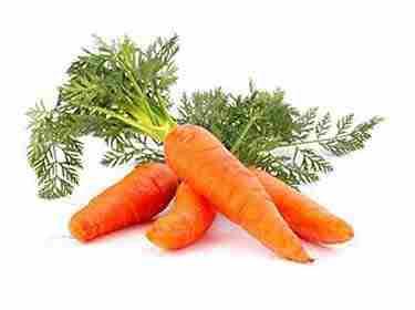 морковь для пожилых