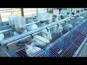 Модульные клетки для кроликов