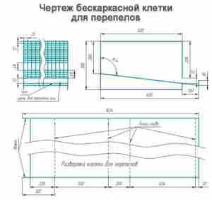 kletka-dlya-perepelov-svoimi-rukami-chertezhi-i-foto-besplatno foto1